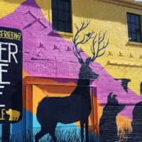 Beer Travels Denver - Great Divide Brewing - Featured - Utah Beer News