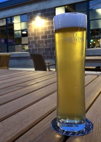 Tastings - Granary Kellerbier - T.F. Brewing